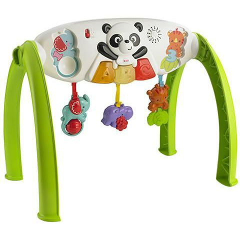 fisher-price-rastem-vmeste-y6588-0-2